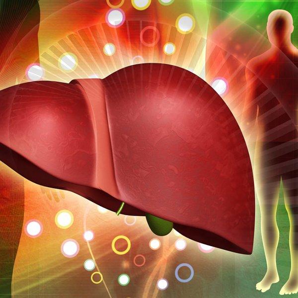 Nutrigenomics In Practice: Detoxification