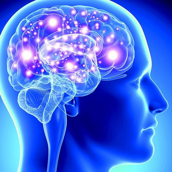 Nutrigenomics In Practice: Nervous System
